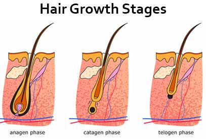 hair-removal-process-stages